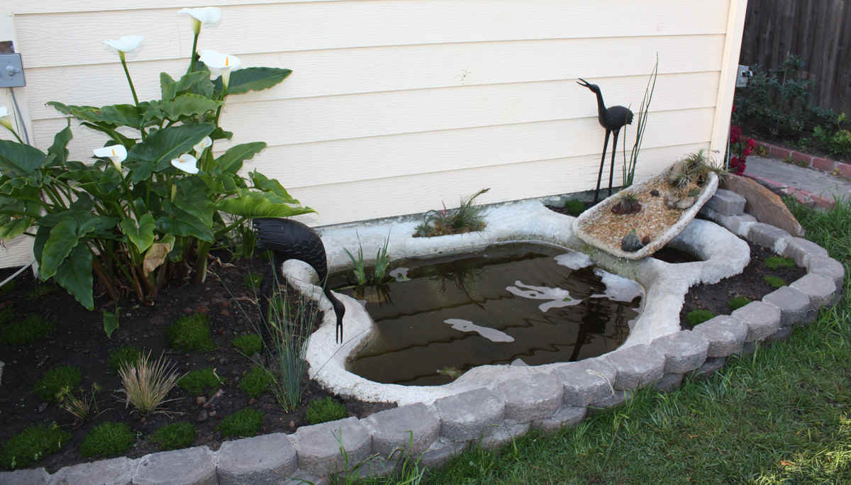 How to build a pond for Building a small pond